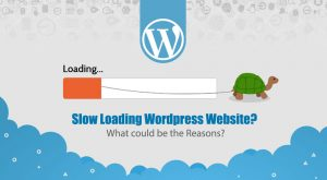 Loading Wordpress Website?